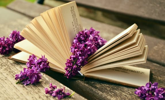book-read-relax-lilac