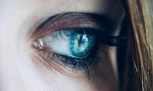 close-up-1837213__180